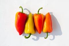 Röd grön gul apelsin för hela spanska peppar i vattendroppar på vit bakgrund isolerat slut för bästa sikt upp arkivbilder