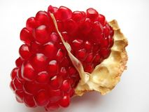 Röd granatäpple på vit bakgrund Royaltyfri Fotografi
