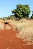 Röd grusväg Fotografering för Bildbyråer