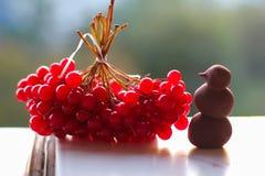Röd Guelder ros - det favorit- bäret av ukrainien folk Det sjöngs i sångerna och visade i konsten av entrie royaltyfri foto