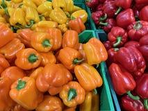 Röd, gul orange peppar Många i marknaden royaltyfri foto