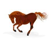 Röd hästvektorillustration Fotografering för Bildbyråer
