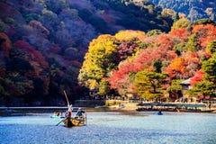 Röd höstnedgång för japansk lönn momijiträd i kyoto Japan Royaltyfria Foton