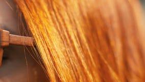 Röd haired kvinnacloseup Ung kvinna för stående med rött hår som skiner i sol arkivfilmer