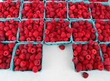 Röd hallonfruktProduce royaltyfria foton