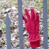 Röd handske Fotografering för Bildbyråer