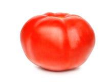 Röd hel tomat som isoleras på en vit bakgrund, närbild En ny tomat klippte ut med texturen och den snabba banan Royaltyfria Foton