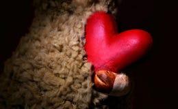 Röd hjärta i armar för förälskelse- och valentin dag Arkivfoton