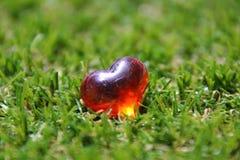 Röd hjärta i gräscloseup Royaltyfri Fotografi