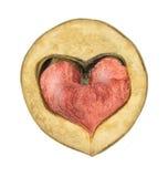 Röd hjärta i valnöt arkivbild