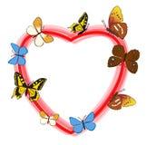 Röd hjärta med färgfjärilar - ram Arkivbild