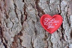 Röd hjärta med orden - jag älskar dig, på träbakgrunden royaltyfri foto