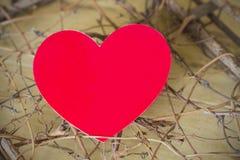 Röd hjärta mellan filialer på valentindagen Royaltyfri Fotografi