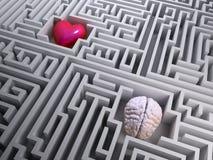 Röd hjärta och hjärna i labyrintlabyrinten Fotografering för Bildbyråer