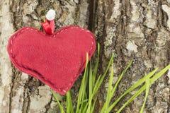 Röd hjärta på ett trädskäll Fotografering för Bildbyråer