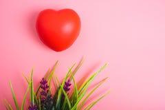 Röd hjärta på rosa bakgrund royaltyfri foto