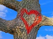 Röd hjärta på trädskäll Royaltyfri Fotografi