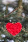 Röd hjärta sörjer på filialen i vinter Royaltyfri Foto