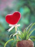 Röd hjärta som göras av en handduk, pinnen med blyertspennan, bandbandet och dvärgananas i den formade vasen startar Royaltyfri Bild
