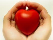 Hjärta räcker in 4 Fotografering för Bildbyråer
