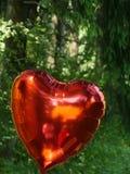 Röd hjärtaballong Royaltyfria Bilder
