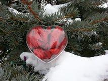 Röd hjärtajulgranprydnad Royaltyfri Fotografi