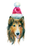 Röd hund för vattenfärg arkivfoton