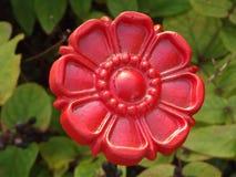 Röd järnblomma royaltyfria foton