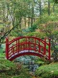 Röd japansk bro i en höstträdgård Arkivbild