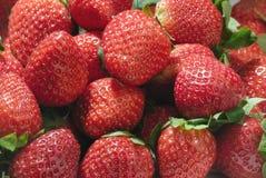 röd jordgubbe royaltyfria foton