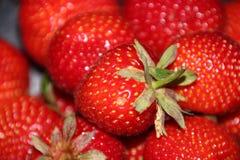 Röd jordgubbe Royaltyfria Bilder