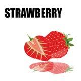 Röd jordgubbe med stilsorten Arkivfoton