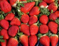 Röd jordgubbe till fröjden av gourmander Arkivbilder