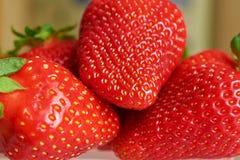 Röd jordgubbenärbild för många bär Arkivfoto