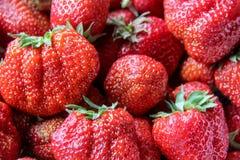 röd jordgubbetextur för korg Arkivbild