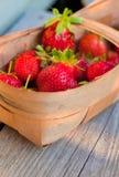 röd jordgubbetwiggen för korg Royaltyfri Foto