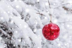 Röd jul klumpa ihop sig att hänga på en snöig filial i vinterskogXmasen och det lyckliga nya året Royaltyfri Fotografi