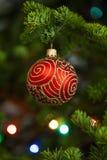 Röd julboll på gran Royaltyfri Fotografi