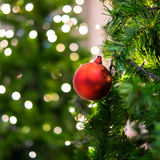 Röd julboll på trädet Royaltyfria Foton