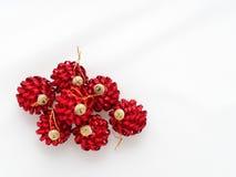 Röd julboll som isoleras på vit bakgrund Arkivfoton