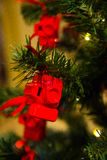 Röd julleksak i en matning av kamerakorten för fotografen på och det nya året som fo substraten Royaltyfria Foton