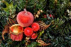 Röd julprydnad som hänger på en julgran Arkivbilder