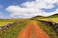 Röd körbana i ett bergigt landskap royaltyfria foton