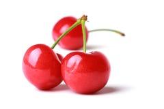 Röd körsbär Fotografering för Bildbyråer
