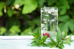 Röd körsbär i ett exponeringsglas med vatten, bubblor Arkivbilder