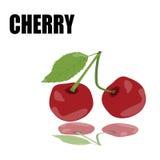 Röd körsbär med stilsorten Royaltyfria Bilder