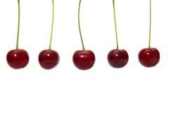 Röd körsbär på en vit bakgrund Arkivbilder