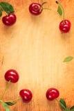 Röd körsbärramgräns Royaltyfri Bild