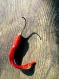 Röd kajennpeppar på trä Arkivfoton