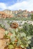 Röd kanjon nära Sedona, Arizona Arkivbild